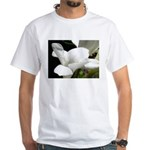 Alabaster White T-Shirt