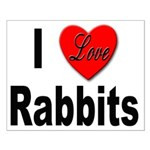 I Love Rabbits for Rabbit Lovers Small Poster