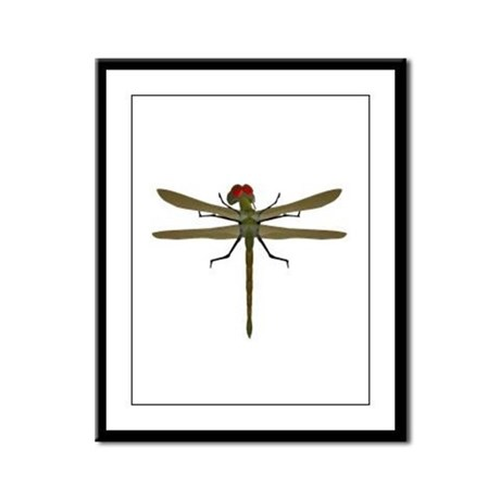 Dragonfly Framed Panel Print