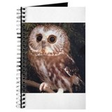 Cool Barn owl Journal