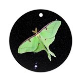 Luna Moth Ornament (Round)