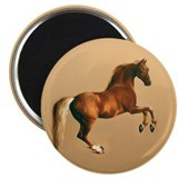 Palomino stallion, horse art. Magnet