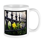 Iron Fence in Paris Mug