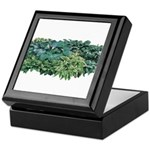 Hosta Clumps Keepsake Box
