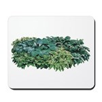 Hosta Clumps Mousepad