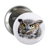 "Great Horned Owl Face 2.25"" Button"