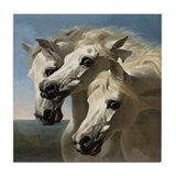 White Arabian Horses. Tile Coaster