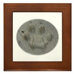 Real Cat Track Framed Tile