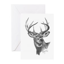 White-Tailed Deer Greeting Cards (Pk of 10)