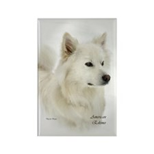 American Eskimo Dog Rectangle Magnet (100 pack)