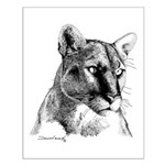 Mountain Lion Small Poster