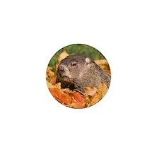 Groundhog Mini Button (10 pack)