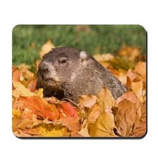 Groundhog Mousepad
