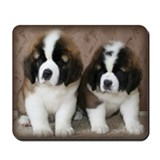 Saint Bernard Twins Mousepad
