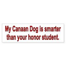 Canaan Dog is smarter Bumper Bumper Sticker