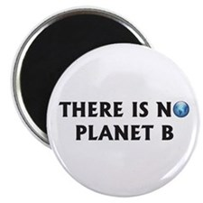 "There Is No Planet B 2.25"" Magnet (10 pack)"