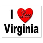 I Love Virginia Small Poster