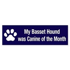 Basset Hound of the Month Bumper Bumper Sticker