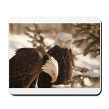 """Eagles Jibing"" Mousepad"