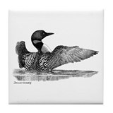 Painted Loon Tile Coaster