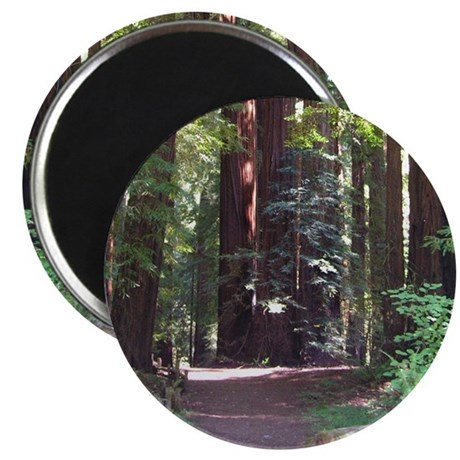 "Redwood Trail 2.25"" Magnet (100 pack)"