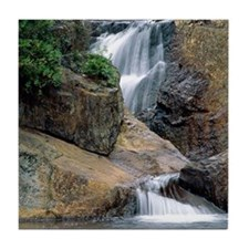 Peaceful Waters Colorado Tile Coaster