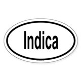 INDICA Oval Decal