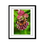 Pearl Crescent Framed Panel Print