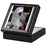 African Grey Keepsake Box