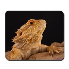 head shot 1900 Mousepad