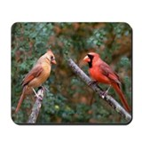 Two Cardinals Mousepad