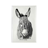 Wild Burro Rectangle Magnet (100 pack)