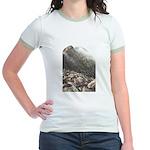 Katahdin Jr. Ringer T-Shirt