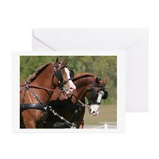 Watercolor Horse Heads Greeting Cards (Pk of 10)