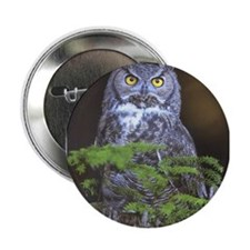 "Funny Barn owl 2.25"" Button"
