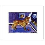 Nova Scotia Duck-Tolling Retriever Small Poster