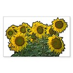 Sunflowers Rectangle Sticker