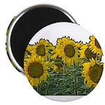 Sunflowers Magnet