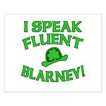 I Speak Fluent Blarney Small Poster