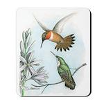 Rufous Hummingbirds Mousepad