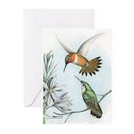 Rufous Hummingbirds Greeting Cards (Pk of 20)