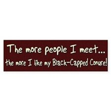 More People Black-Capped Conure Bumper Bumper Sticker
