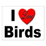 I Love Birds for Bird Lovers Small Poster