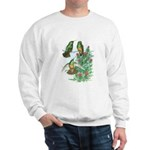 Buff-bellied Hummingbirds Sweatshirt