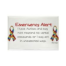 Alert 2 Rectangle Magnet