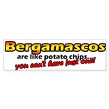 Potato Chips Bergamasco Bumper Bumper Sticker