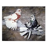 Champion Trumpeter Pigeons Small Poster