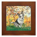 Spring - Corgi (Bl.M) Framed Tile