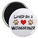 "Loved By A Weim... 2.25"" Magnet (10 pack)"