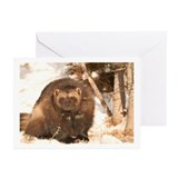 """Do You See What I See?"" Cards (Pkg 10)"